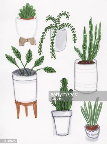 illustrations, cliparts, dessins animés et icônes de maison plantes marqueur dessin - plante verte