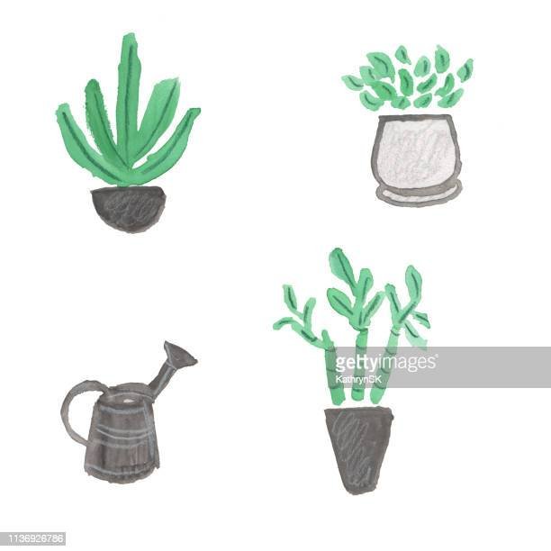 illustrations, cliparts, dessins animés et icônes de plantes d'intérieur et arrosoir - plante verte