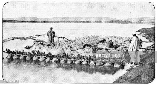 Huge Raft Full of Crops on the Nile in Cairo, Egypt - Ottoman Empire