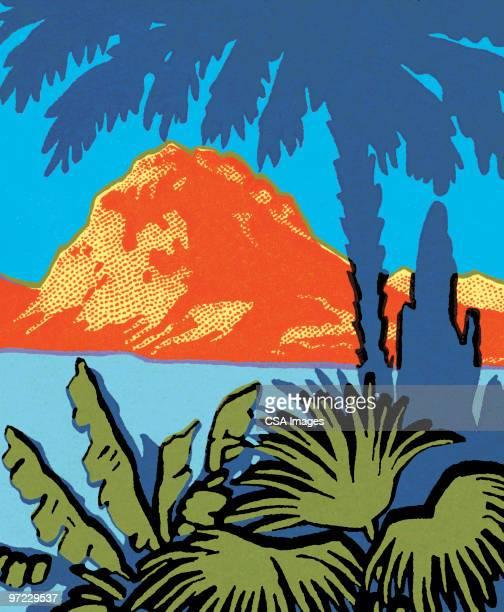 illustrations, cliparts, dessins animés et icônes de hula dancer - île