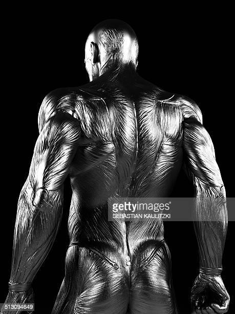 human back muscles, artwork - human back stock illustrations, clip art, cartoons, & icons