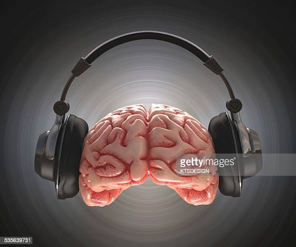 human brain and headphone, artwork - sensory perception stock illustrations