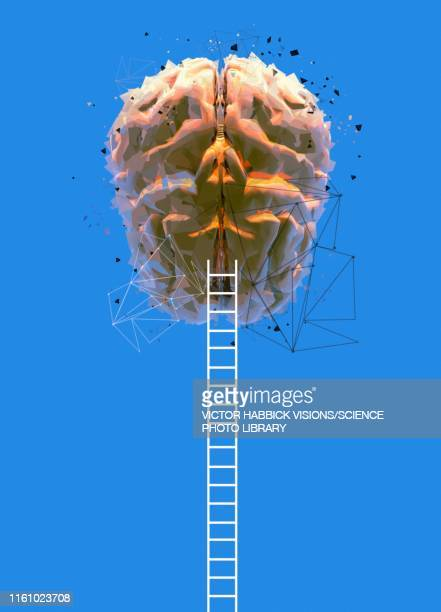human brain and ladders, illustration - growth stock illustrations