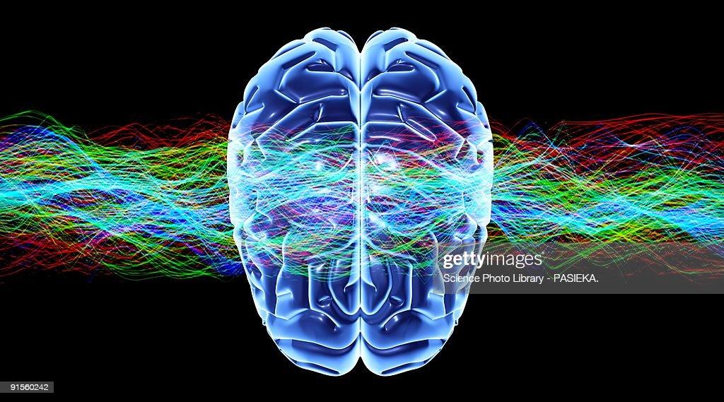 Human brain and waves : Stock Illustration