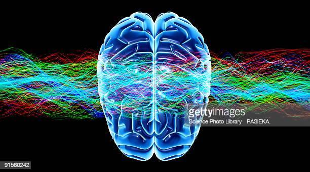 ilustrações de stock, clip art, desenhos animados e ícones de human brain and waves - sistema nervoso central