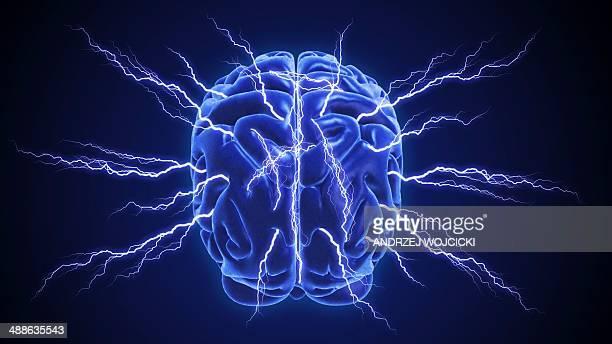 ilustrações de stock, clip art, desenhos animados e ícones de human brain, artwork - sistema nervoso central