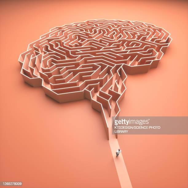human brain, conceptual illustration - artificial intelligence stock illustrations