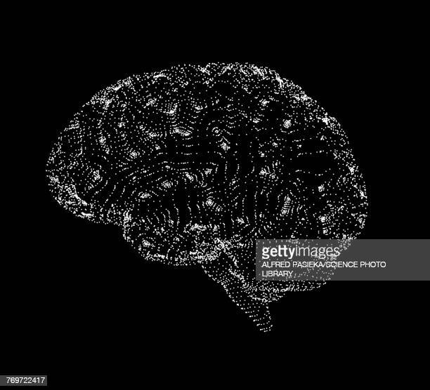 human brain, conceptual illustration, illustration - spotted stock illustrations