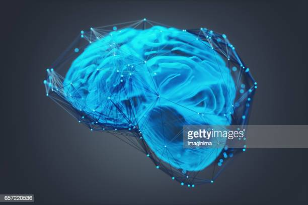 Human Brain Covered With Networks