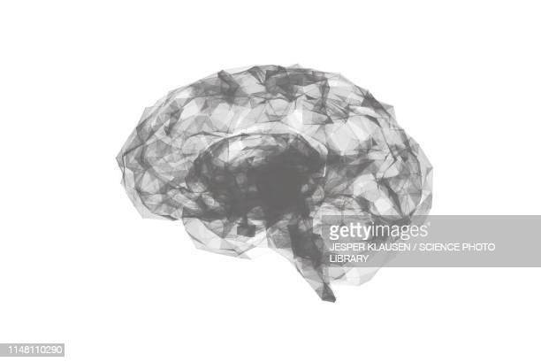 human brain, illustration - triangle shape stock illustrations