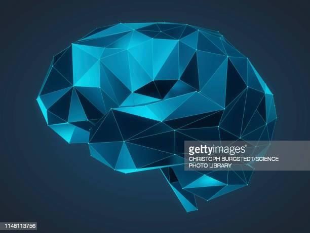 illustrazioni stock, clip art, cartoni animati e icone di tendenza di human brain, illustration - cervello umano