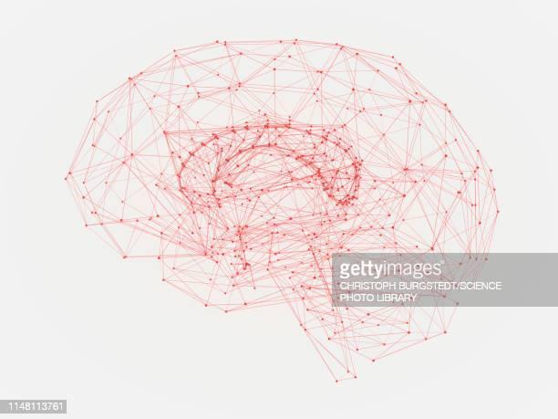 human brain, illustration - connection stock illustrations