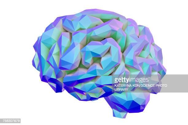 ilustrações, clipart, desenhos animados e ícones de human brain, low-polygonal illustration - cérebro humano