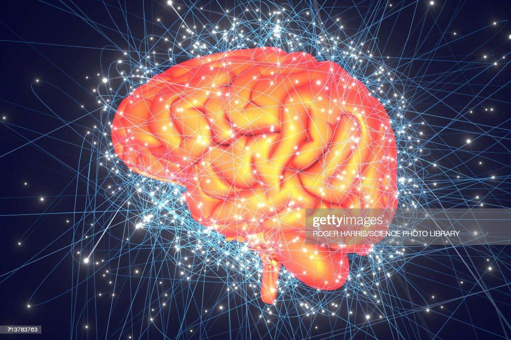 Human brain network : stock illustration