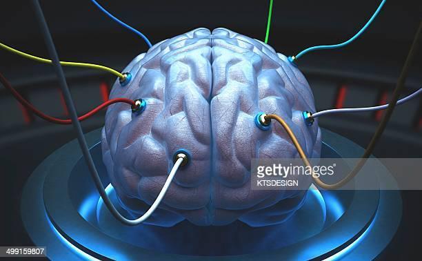 Human brain with sensors, artwork