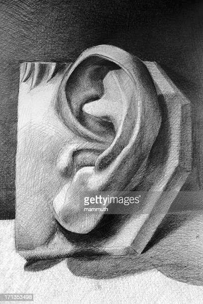 ilustraciones, imágenes clip art, dibujos animados e iconos de stock de oreja humana - oreja humana