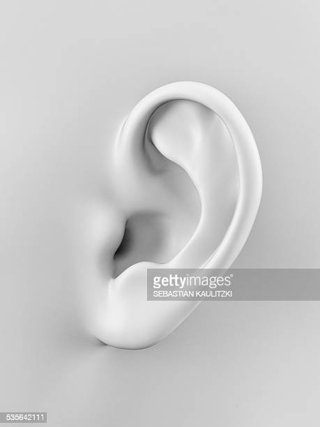 human ear, illustration - ear stock illustrations