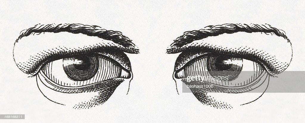 Ojo Humano Grabado Ilustración de stock - Getty Images
