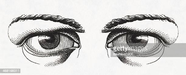 ilustrações, clipart, desenhos animados e ícones de olhos humanos aviso - retina globo ocular