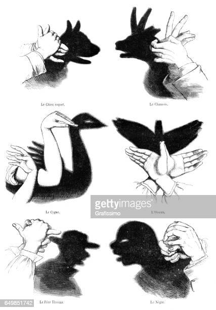 Human hands playing shadow play illustration 1861