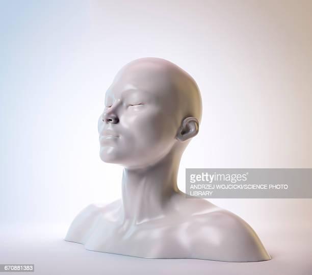 illustrations, cliparts, dessins animés et icônes de human head, sculpture, illustration - représentation humaine