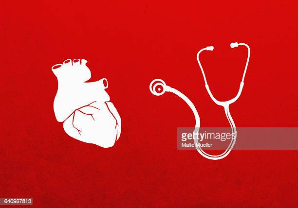 Human heart and stethoscope against red background