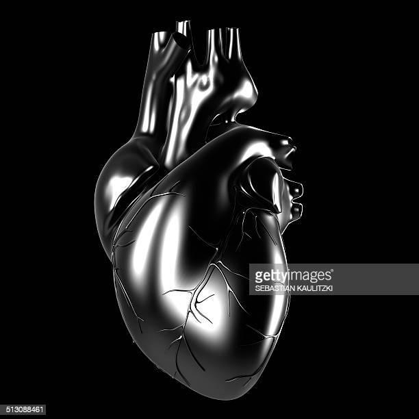 illustrations, cliparts, dessins animés et icônes de human heart, artwork - organe interne humain