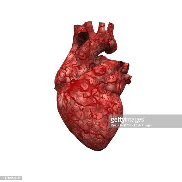 human heart - coronary artery stock illustrations, clip art, cartoons, & icons