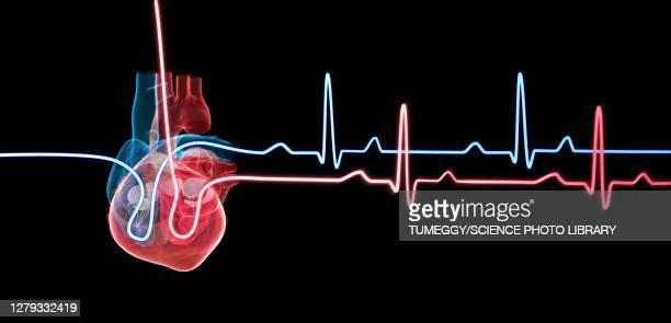 illustrations, cliparts, dessins animés et icônes de human heart with a heartbeat traces, illustration - coeur organe interne