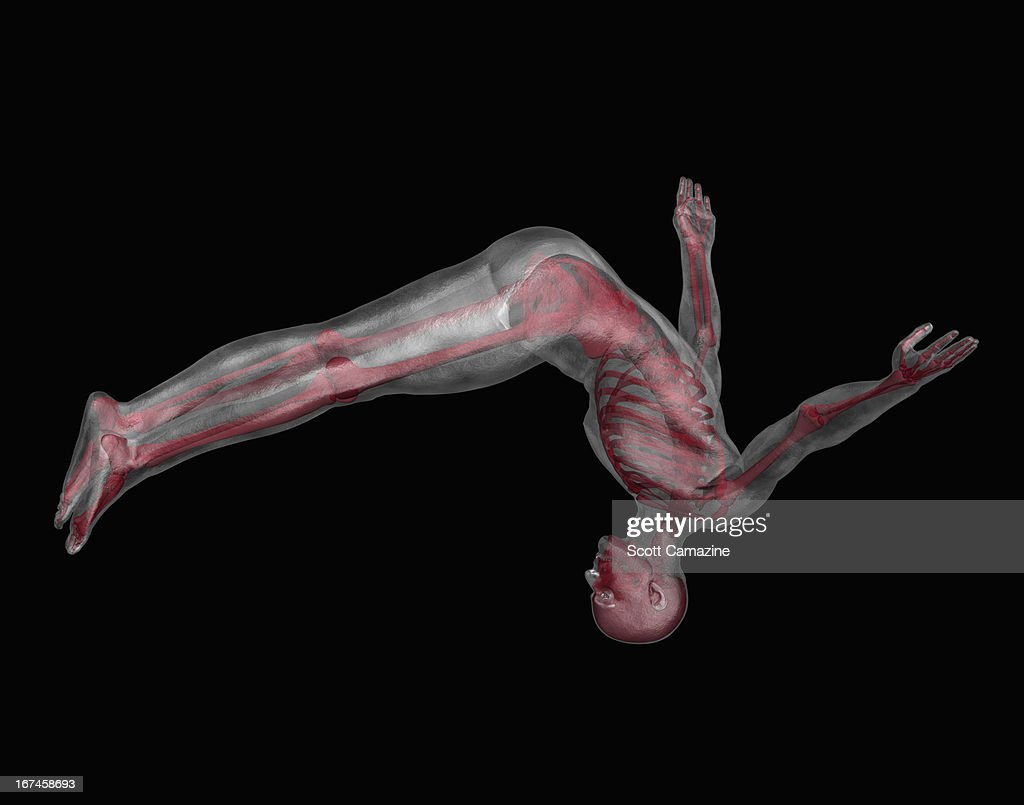 Human skeleton jumping upside down : Stock Illustration