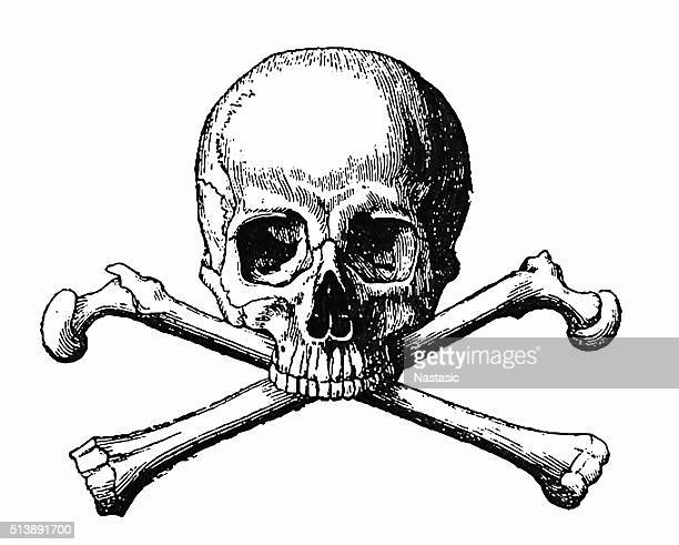 human skull and bones - engraving stock illustrations