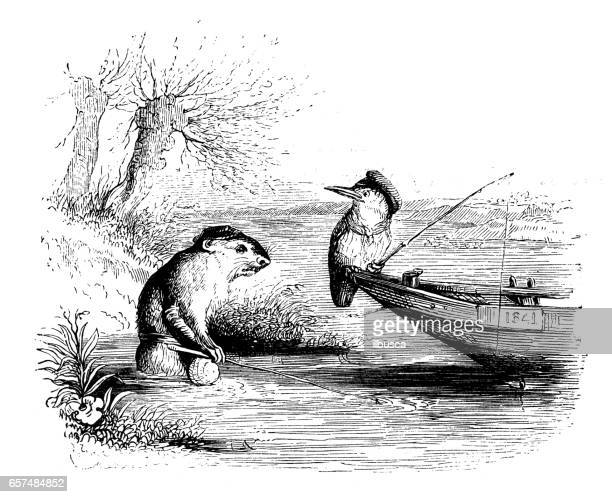 Humanized animals illustrations: Bird and otter fishing