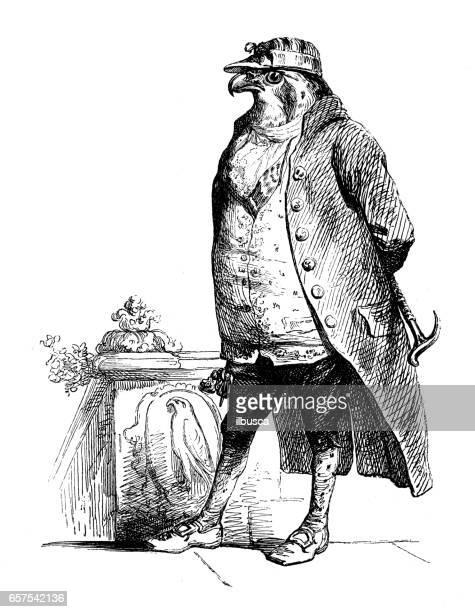 humanized animals illustrations: bird - falcon bird stock illustrations, clip art, cartoons, & icons