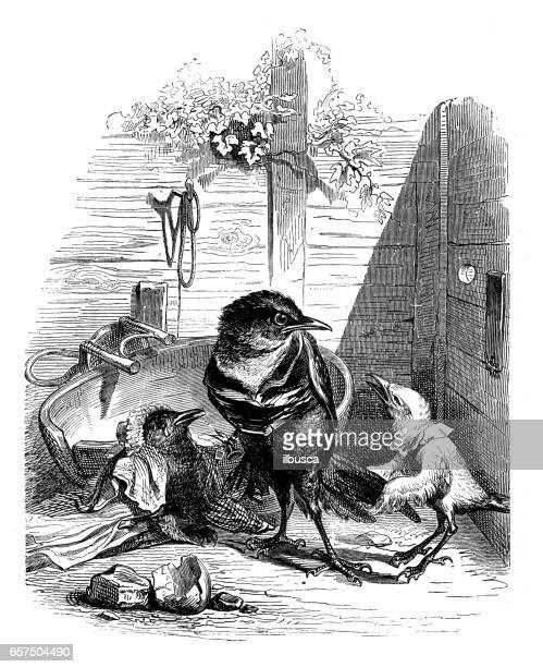 humanized animals illustrations: birds family violence - family fighting cartoon stock illustrations