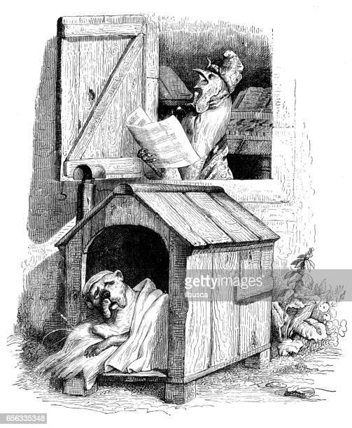 ilustrações, clipart, desenhos animados e ícones de humanizado ilustrações de animais: cão acordou por galo - cockerel