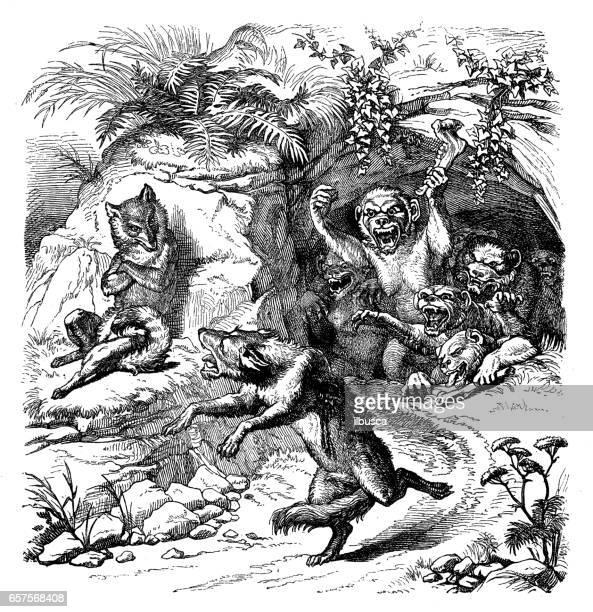 Humanized animals illustrations: Fox and monkeys