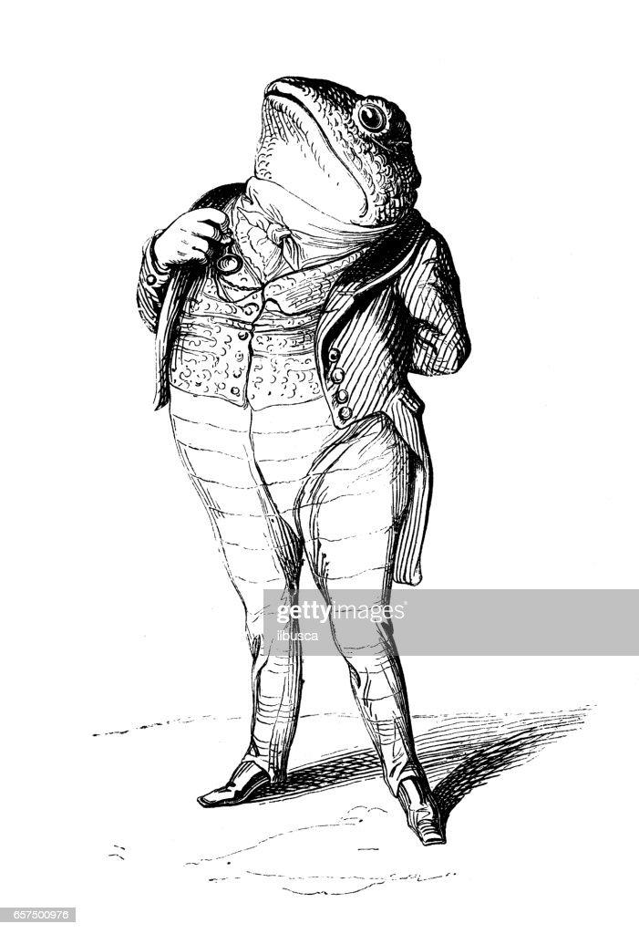 Humanized animals illustrations: Frog : stock illustration