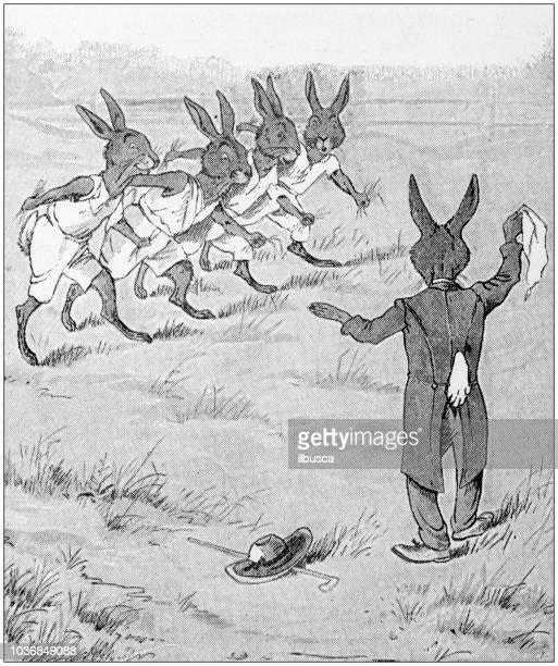 humanized animals illustrations: hares run - race official stock illustrations, clip art, cartoons, & icons