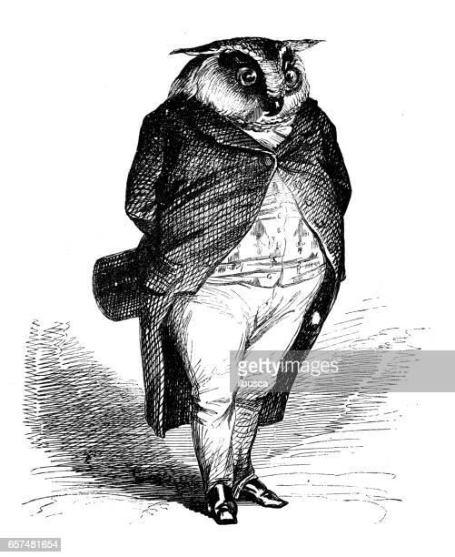 illustrations, cliparts, dessins animés et icônes de humanisé illustrations d'animaux: chouette - chouette