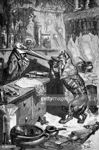 humanlike animals: wolf looking inside a living room of monkeys - anthropomorphic foods stock illustrations, clip art, cartoons, & icons