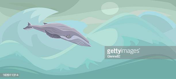 humpback whale in the ocean - humpback whale stock illustrations, clip art, cartoons, & icons