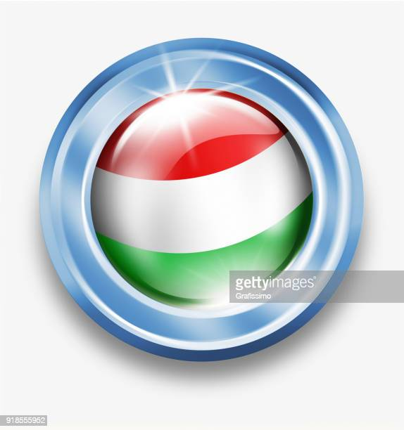 Hungary silver button with hungarian flag isolated on white