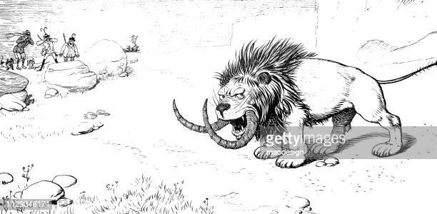 hunting a lion with big teeth - 1896 - cartoon characters with big teeth stock illustrations
