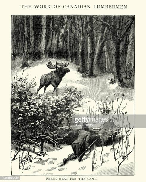 Jakt älg i kanadensiska skogen, 1800-talet