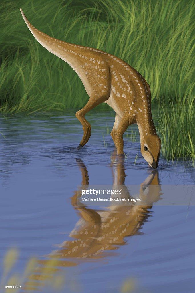 Hypsilophodon drinking water from a prehistoric lake. : stock illustration