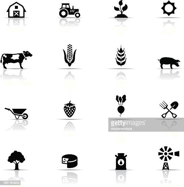 icon set, farm - calcium stock illustrations, clip art, cartoons, & icons
