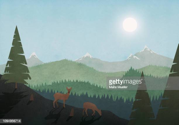 ilustraciones, imágenes clip art, dibujos animados e iconos de stock de idyllic view of deer grazing and sun over mountain and forest landscape - dos animales