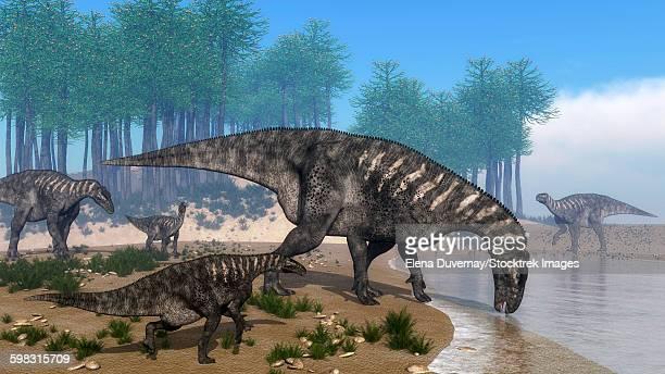 iguanodon dinosaurs herd at the shoreline - 3d render - hadrosaurid stock illustrations, clip art, cartoons, & icons