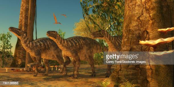 Iguanodon dinosaurs make their way among the trees of a Cretaceous forest.
