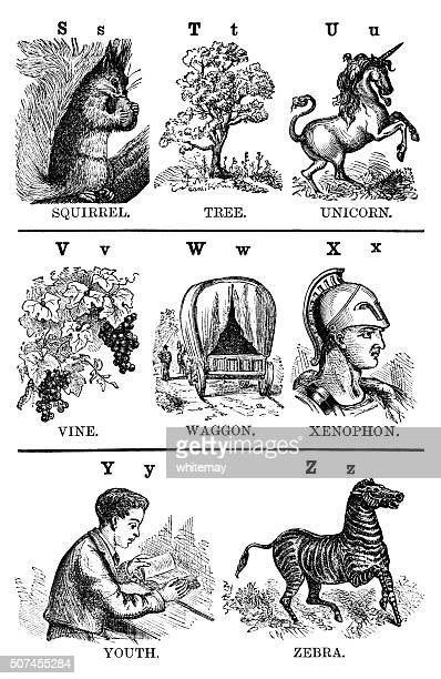 illustrated alphabet s-z (victorian engravings) - unicorn stock illustrations, clip art, cartoons, & icons